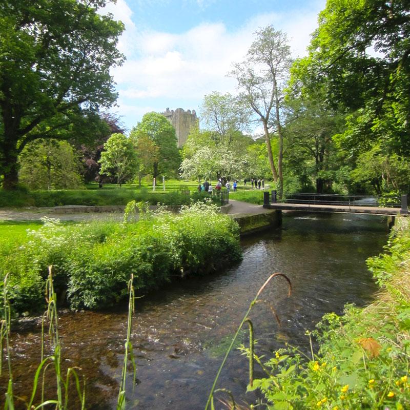 reisetipps-cork-reisetipps-irland-blarney-castle-eingang